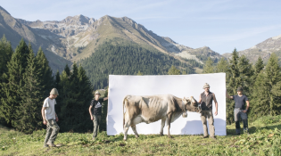 """SIGNS AND DREAMS OF THE ALPS: PASSION, PRIDE AND RESILIENCE"""
