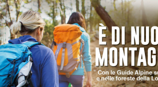 Free Excursions with Alpine Guides – Back to the mountains!